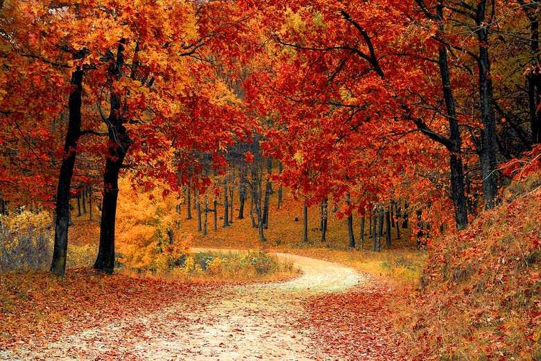 Jesien-2018-kiedy-pierwszy-dzien-jesieni-kalendarzowej-i-astronomicznej_article